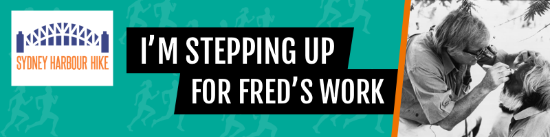 I'm Stepping Up For Fred's Work